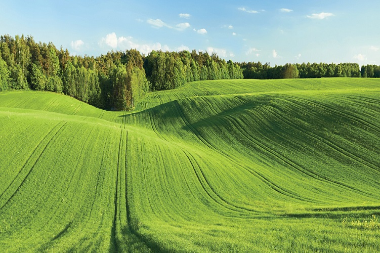 """II Nabór wniosków  na """"Scalanie gruntów"""" w ramach Programu Rozwoju Obszarów Wiejskich"""