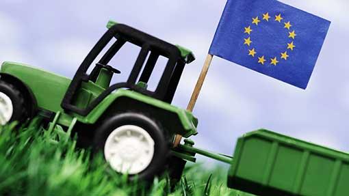 Jaka przyszłość wspólnej polityki rolnej?