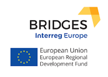 Newsletter projektu BRIDGES