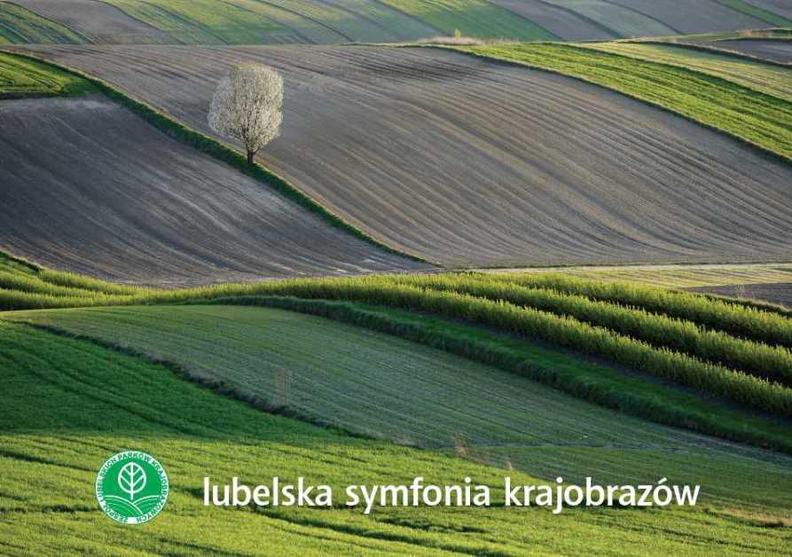 "Album ""Lubelska symfonia krajobrazów"" nagrodzony!"