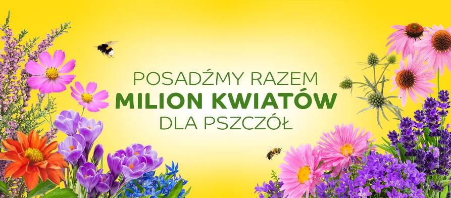 Rekrutacja gmin przyjaznych pszczołom