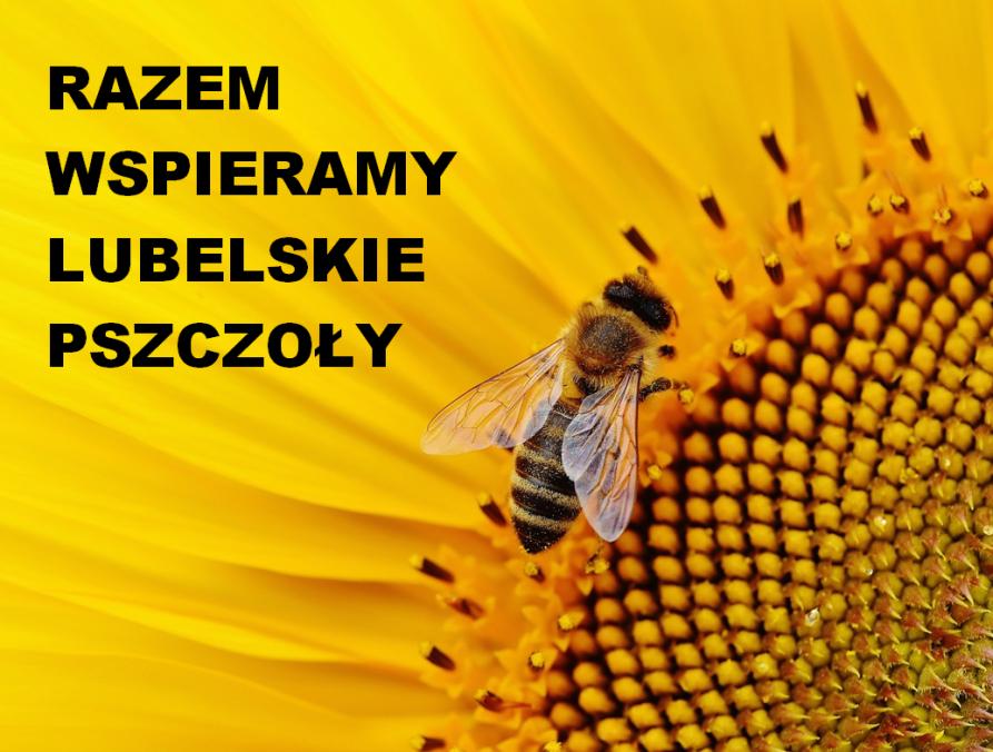 Razem wspieramy lubelskie pszczoły