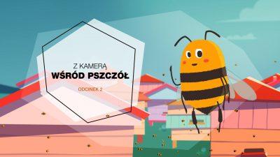Obrazek zapowiadający drugi odcinek serii z kamerą wśród pszczół. Komiksowa pszczoła na tle narysowanych uli