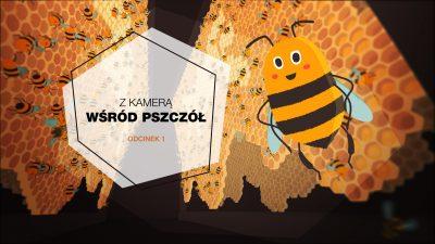 Obrazek zapowiadająca pierwszy odcinek serii z kamerą wśród pszczół. Komiksowa pszczoła na tle plastra miodu.