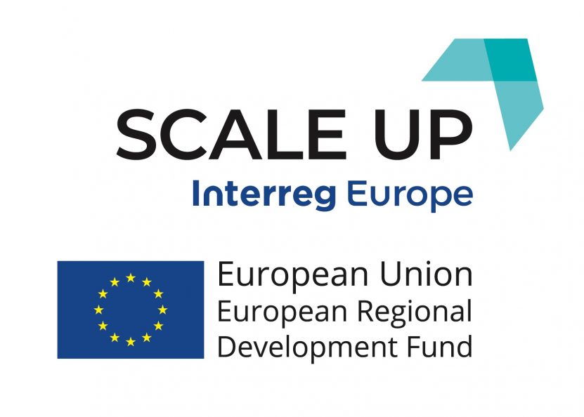Logo programu Scale up