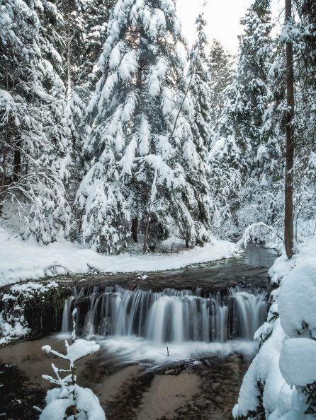 Obraz przedstawia zimowy pejzaż. Na pierwszym planie miniwodospad na rzece, a w tle ośnieżone świerki. Obraz jest w tonacji biało-szarej.