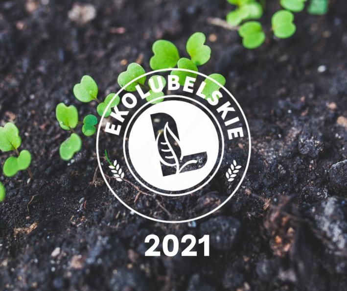 Logo konkursu ekolubelskie na tle ziemi