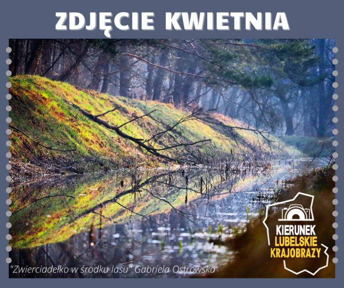 Na górze napis zdjęcie kwietnia, poniżej zwycięskie zdjęcie. Na zdjęciu Małe jeziorko w środku lasu. Rosnące na brzegu zielone drzewa, krzewy i trawa odbijają się w tafli wody. Logo konkursu fotograficznego, oraz napis Zwierciadełko w środku lasu Gabriela Ostrowska