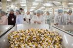 Wizyta w Fabryce Cukierków Pszczółka - linia produkcyjna