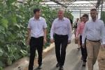 Wizyta w Bazie Rolniczej Henańskiej Akademii Rolniczej