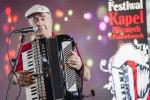 Wyróżnienie. Małgorzata Ostasz-Szeliga, Maryniów - Festiwal Kapel Ulicznych i Podwórkowych w Łęcznej