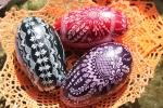 Pisanki z kaczych jajek (fot. Tomasz Makowski/UMWL)