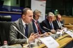 Konf.21.11.17 DPW EPP by T.Cibulla (150)-1