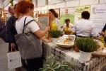 Zainteresowanie wzbudzało nie tylko lubelskie jadło, ale i foldery turystyczne (fot. Rafał Serej)