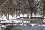 Zimowy-obrazek-znad-Tanwi.-Fot.-Joanna-Opiela-Basińska-archiwum-UMWL