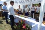 Rybne (i nie tylko) pyszności serwowały w Kraśniku panie z KGW Bystrzyca